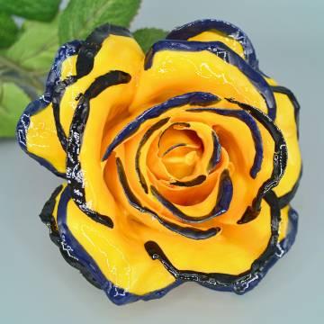 Rose di Contrada 92